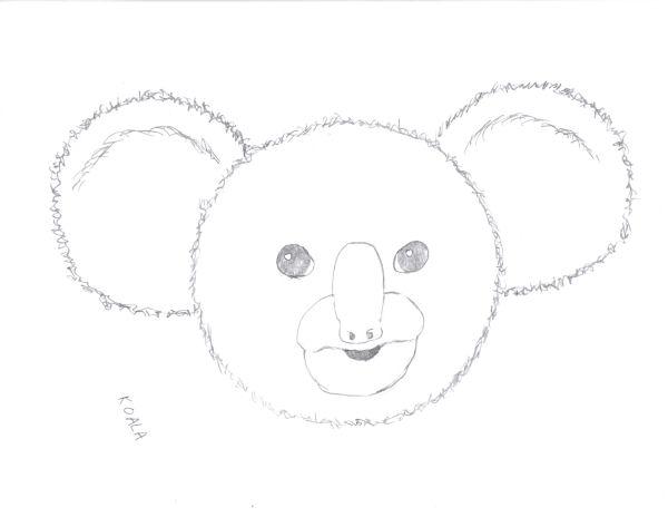 Koala Bear 2007 12 29